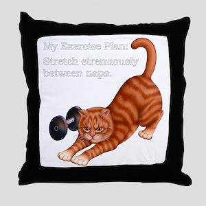 Exercise Plan B Throw Pillow