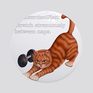 Exercise Plan B Round Ornament