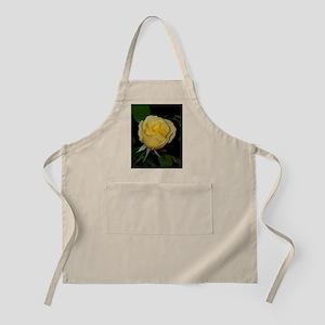 Yellow Rose of Texas Apron
