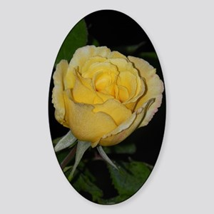 Yellow Rose of Texas Sticker (Oval)