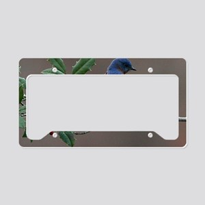 Bluebird in Holly License Plate Holder