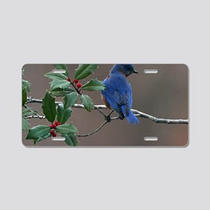 Bluebird in Holly Aluminum License Plate