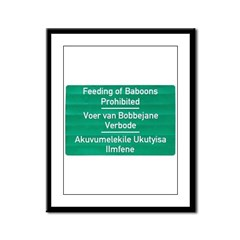 Don't feed the baboons! Framed Panel Print