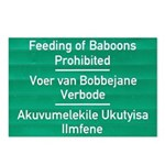Don't feed the baboons! Postcards (Package of 8)