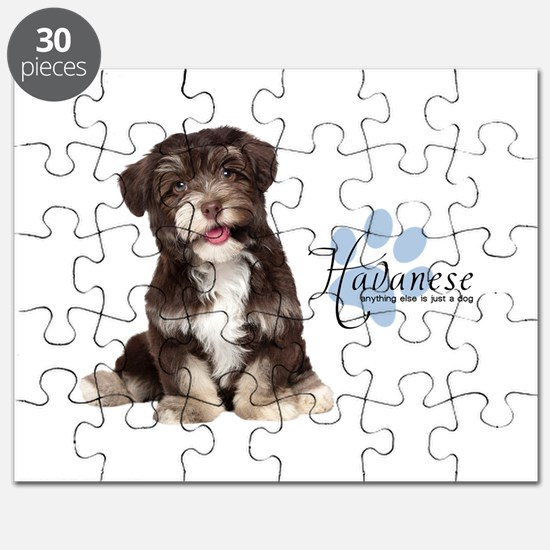 Havanese Puppy Puzzle