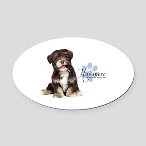Havanese Puppy Oval Car Magnet