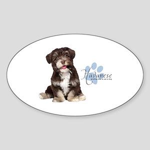 Havanese Puppy Sticker (Oval)