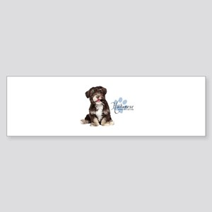 Havanese Puppy Sticker (Bumper)