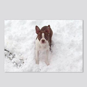 Red Boston Terrier Postcards (Package of 8)