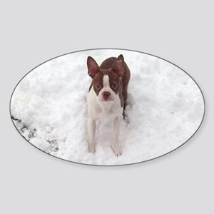 Red Boston Terrier Sticker (Oval)