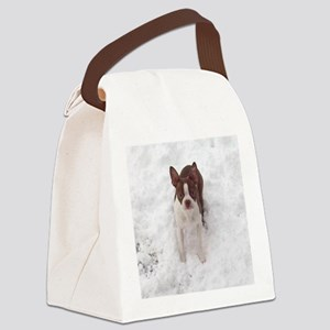 Red Boston Terrier Canvas Lunch Bag