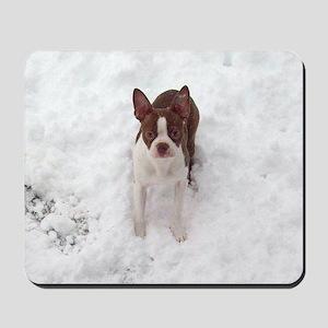 Red Boston Terrier Mousepad