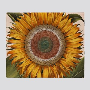 Basilius Besler Sunflower Throw Blanket
