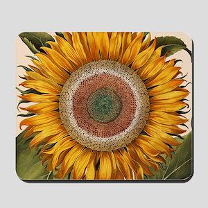 Basilius Besler Sunflower Mousepad