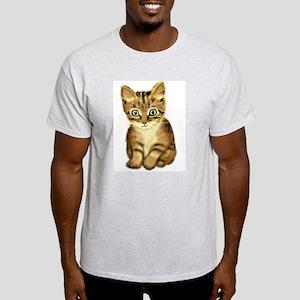 Kitten Ash Grey