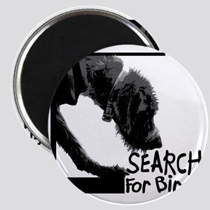 Search birch odor scent nose work Magnet