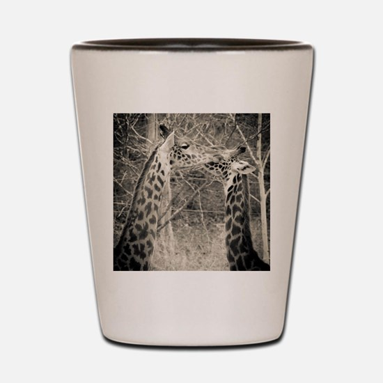 Giraffe Love Shot Glass