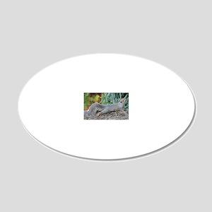 Squirrel Yoga 11550 H 20x12 Oval Wall Decal