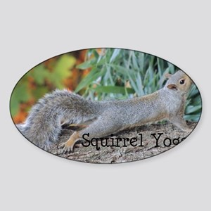 Squirrel Yoga 11550 H Sticker (Oval)
