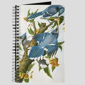 bja_clipboard Journal