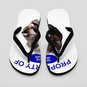 property of xxl Irish wolfhound Flip Flops