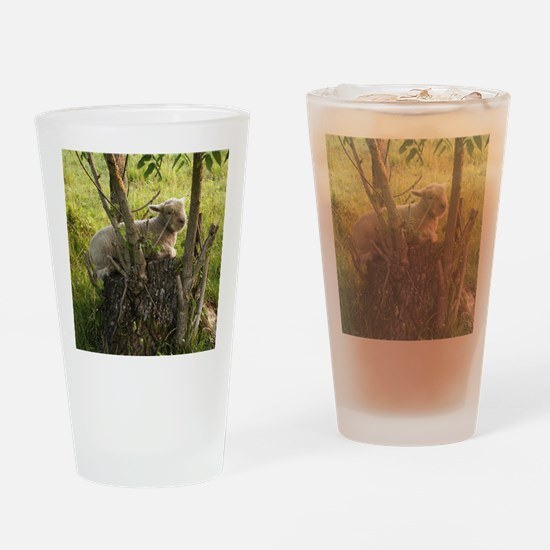 King of the Stump Drinking Glass