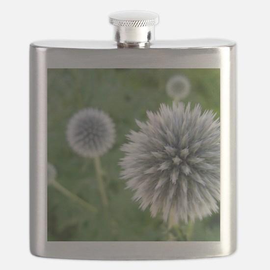 Great Garden Balls of Fire  Flask