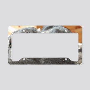 Snoozing Schnauzer Puppies License Plate Holder