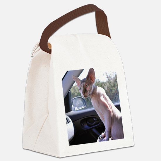 Little George Hairlesson Canvas Lunch Bag