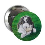 """Bearded Collie 2.25"""" Button (10 pack)"""