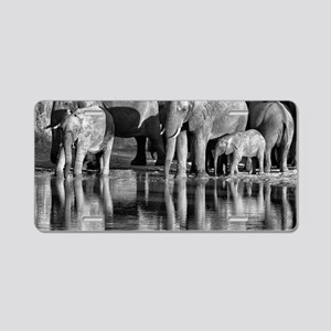 Elephant Reflections Aluminum License Plate