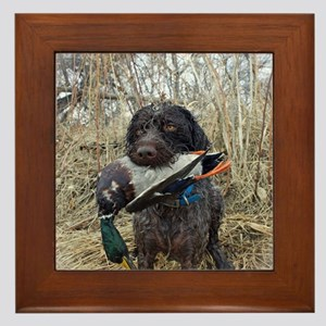 German wirehaired pointer calendar Framed Tile
