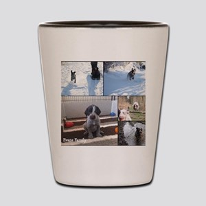 german wirehaired pointers Shot Glass