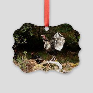 turkeylaptop Picture Ornament