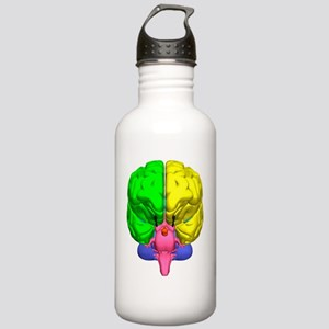 Brain anatomy Stainless Water Bottle 1.0L