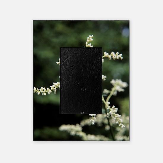 Artemisia flowers Picture Frame