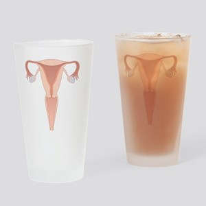 Female reproductive system, artwork Drinking Glass
