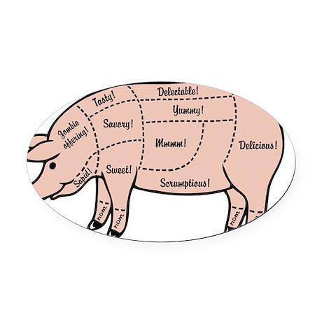 Pig Magnet Diagram Block And Schematic Diagrams