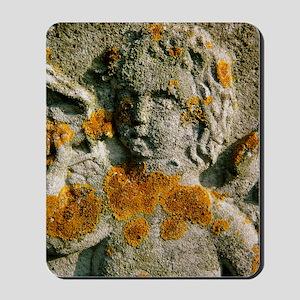 Macrophotograph of a lichen Mousepad