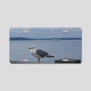 Sea Gull In Seattle Aluminum License Plate