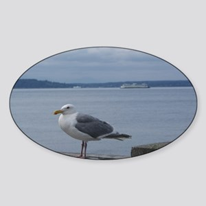 Sea Gull In Seattle Sticker (Oval)