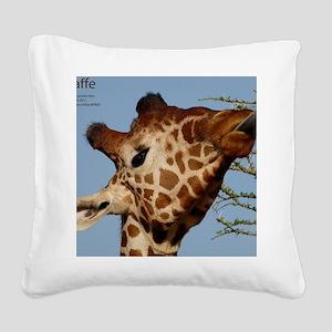 Giraffe Square Canvas Pillow