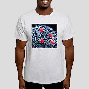 Human tongue surface, SEM Light T-Shirt