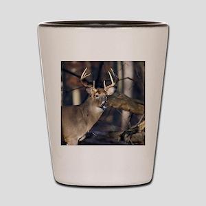 Deer in Sun D1312-020 Shot Glass