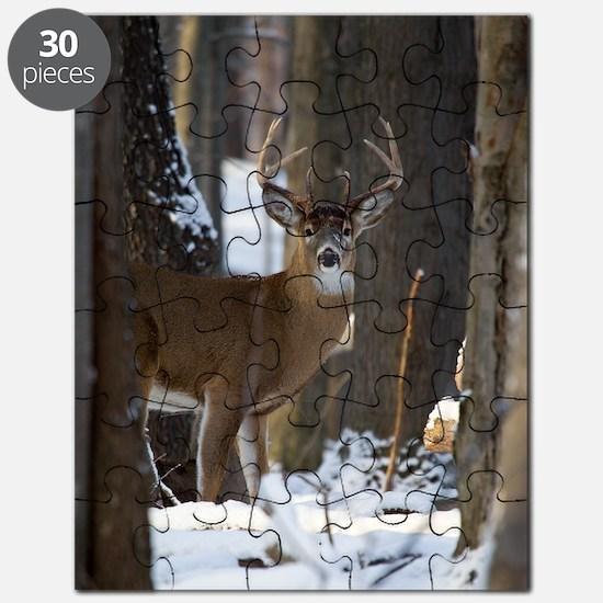Trophy Whitetail D1316-014 Puzzle