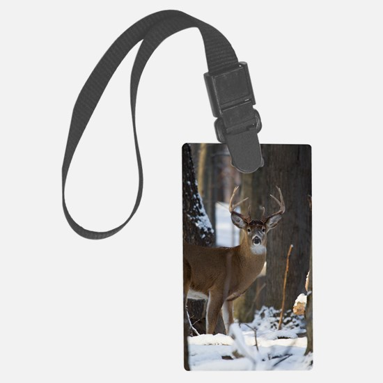 Trophy Whitetail D1316-014 Luggage Tag