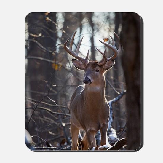 Dominant Buck D1342-025 Mousepad