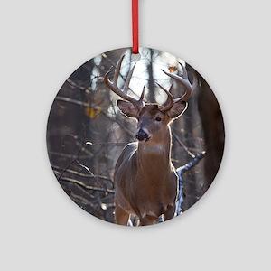 Dominant Buck D1342-025 Round Ornament