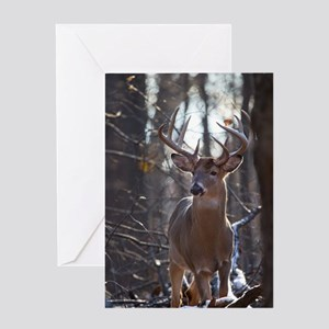 Dominant Buck D1342-025 Greeting Card