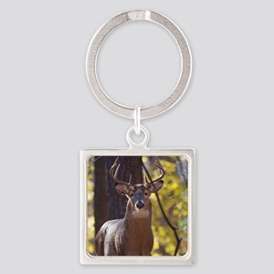 Buck Deer D1312-048 Square Keychain